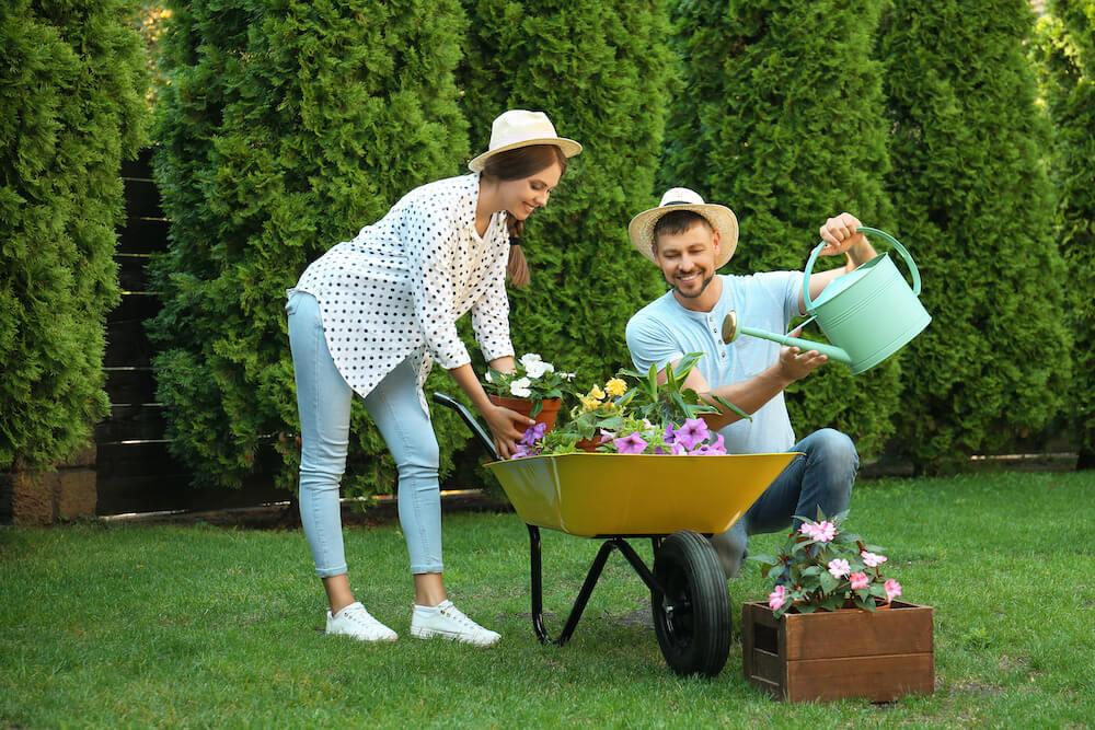 Wir sorgen für Ordnung im Garten